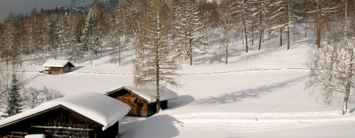 G Winter Blick hinters Haus